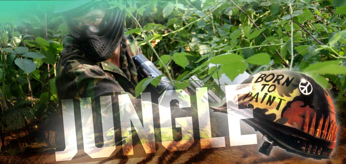 Jungle-Header